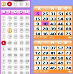 Beatle Bingo offers bingo games such as 90 ball, 75 ball and 52 card