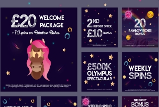 Bucky Bingo will offer you free tickets, spins and cash bonuses