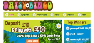Review of Daisy Bingo's games, bonuses and services