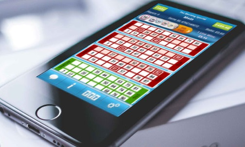 What programmes for mobile devices do bingo website use?