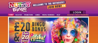 Review of Nutty Bingo's games, bonuses and services
