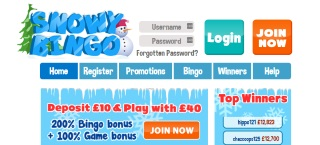 Review of Snowy Bingo's games, bonuses and services
