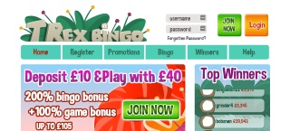 Review of T-Rex Bingo's games, bonuses and services